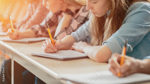 Fotografia  Row of Multi Ethnic Students in the Classroom Taking Exam/ Test/ Writing in Notebooks