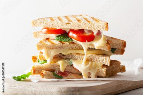 Fototapeta grilled cheese and tomato sandwich on white background obraz