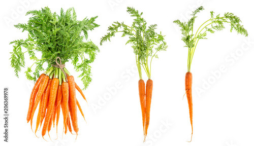Carrot vegetable green leaves Food objects Fototapet