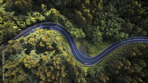 Aerial view of winding road amidst trees in forest - 206385751