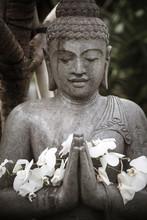 Close-up Of Flowers On Buddha Statue