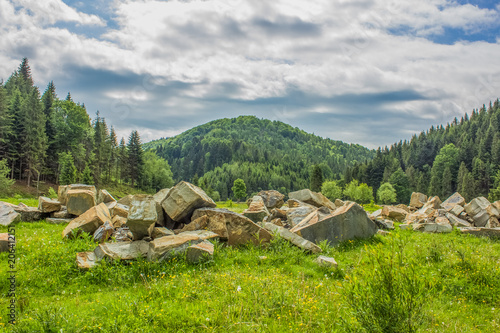 Poster Donkergrijs mountain valley forest landscape