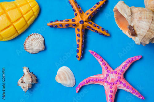 Recess Fitting India Fruit and starfishes on blue background, summer vacation concept