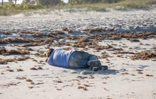Unknown Homeless Man Is Sleepi...
