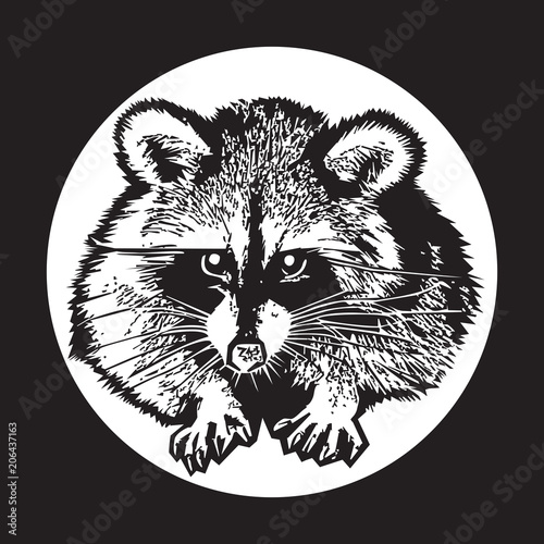 Poster Croquis dessinés à la main des animaux Raccoon - realistic graphic vector illustration. Black and white portrait in style of engraving, isolated on a white circle, design element for logo or template. Cute animal of North America.