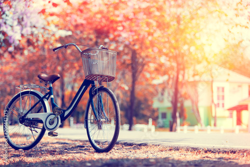 Photo Stands Bicycle Vintage Bicycle in Summer public park made with color Vintage Tone,Filtered effect