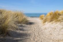 Footpath To The Beach Through ...