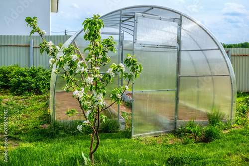 Greenhouse Made Of Plastic For Growing Green Vegetables City Garden