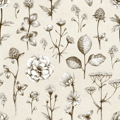 Fototapeta Do pokoju Wild flowers drawings. Seamless pattern