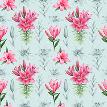 Illustrations Of Lily Flowers....
