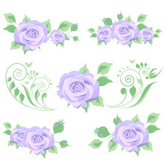beautiful violet flowers , on a white