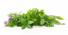 Fresh Garden Herbs Isolated On...