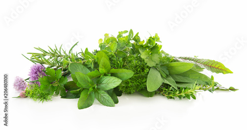 Poster Condiments Fresh garden herbs isolated on white background