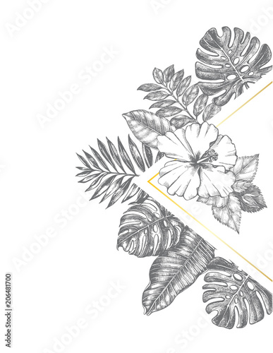 Photo sur Toile Empreintes Graphiques Background with Ink hand drawn hibiscus flower and tropical leaves. Template for cards, banners, labels. Vector illustration.