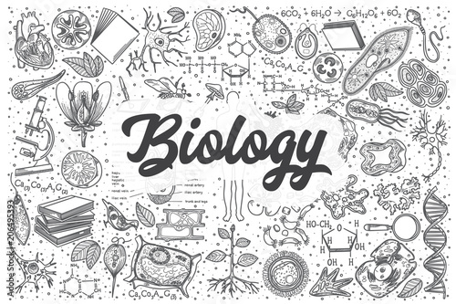 Fotografie, Tablou Hand drawn biology vector doodle set.