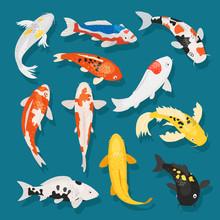 Japanese Fish Vector Illustrat...