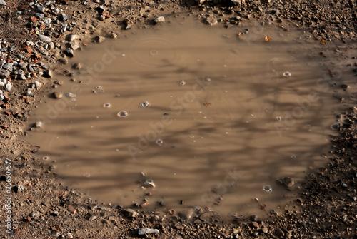 Fotografie, Obraz  Pozzanghera con fango dopo la pioggia