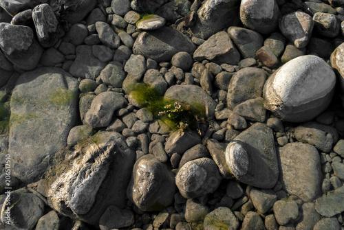 Fotografie, Obraz  Terreno roccioso