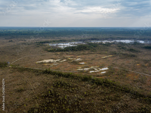 Fotobehang Blauwe jeans drone image. aerial view of swamp area with foot walk trails