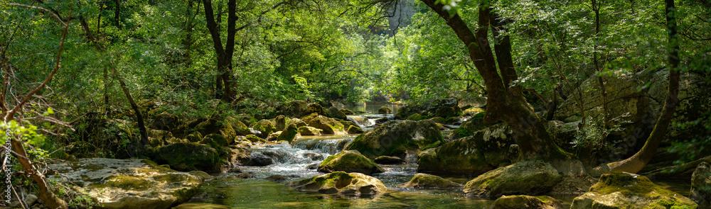 Fototapety, obrazy: panorama sur une rivière et son environement luxuriant