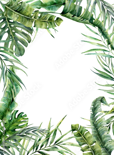 Watercolor tropical frame with exotic leaves. Hand painted floral illustration with banana, coconut and monstera branch isolated on white background for design, fabric or print. Wall mural