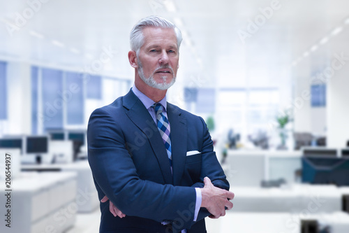 Fotografia Senior businessman in his office