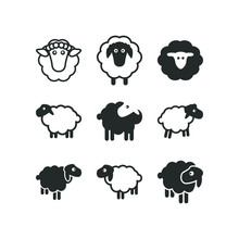 Sheep Logo Icon Template