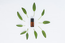Bottle Of Essential Sage Oil And Sage Leave. Sage Isolated On White Background