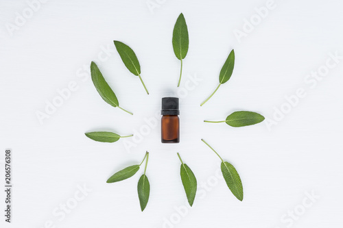 Recess Fitting Condiments Bottle of essential sage oil and sage leave. Sage isolated on white background