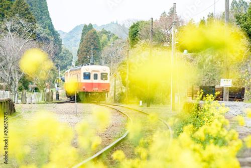 Fotobehang Zwavel geel photo