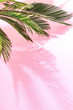 canvas print picture - Summer tropical pastel background with palm
