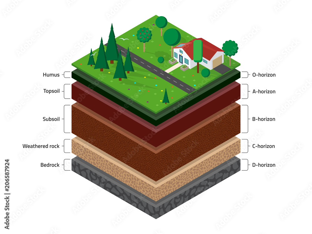 Fototapety, obrazy: Isometric named layers of soil with a top layer of green grass,  house, forest, garden and road on it. The stratum of organic, minerals, sand, clay.