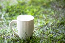 Coffee Cup In Raining