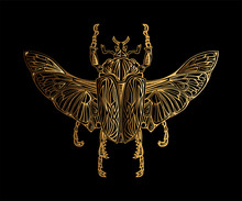 Exotic Golden Beetle Isolated On Black Background.