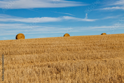Foto op Aluminium Blauw Hay Bales on the horizon of a field in Sussex, on a sunny summer evening