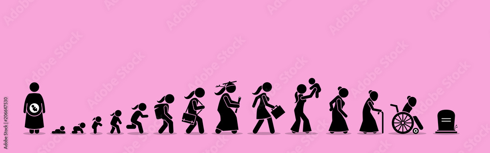 Fototapeta Female life cycle and aging process. Girl or woman growing up from baby to old age.