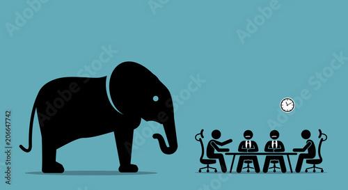 Fotografia Elephant in the room