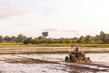 Plowing Tracktor In The Rice Farm