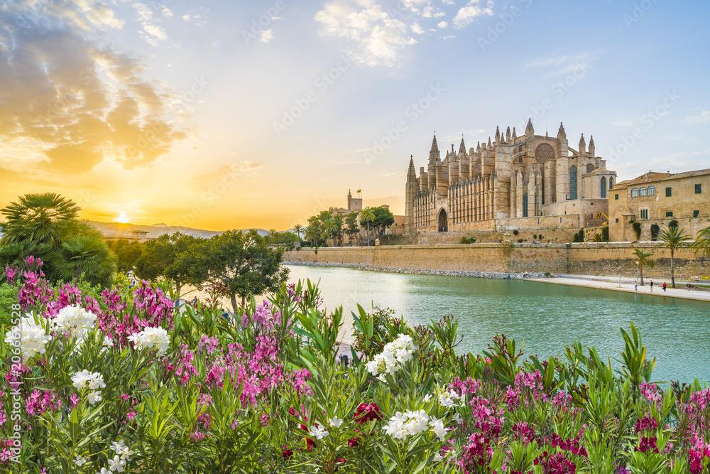Fototapety, obrazy: Cathedral La Seu at sunet time, Palma de Mallorca islands, Spain