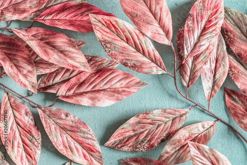 Pastelowy różowy biały wzór liści na pastelowe niebieskie tło, widok z góry, płaskie świeckich. Koncepcja natury