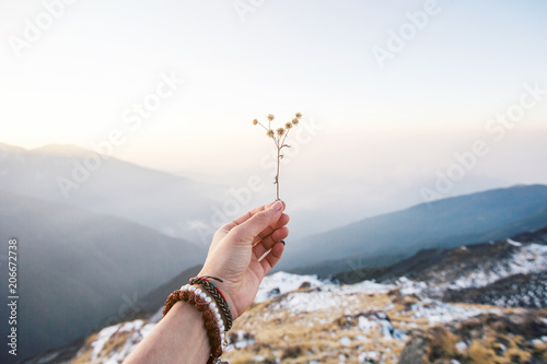 Photo  Mountain flower in female hand covered worm mitten with fog landscape above clou