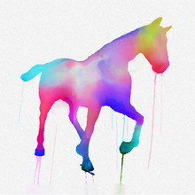 Hand Painted Horse Silhouette In Bright Colours