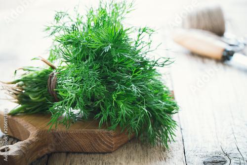 Papiers peints Condiment Bunch of fresh homegrown organic dill