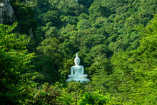 White Buddha Image On Hill Surrounded By Trees