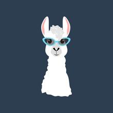 Llama In Cateye Glasses