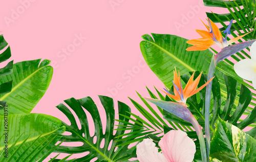 tropikalne-zielone-liscie