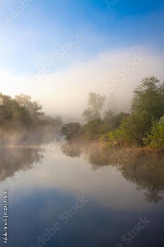 Poster Rivière de la forêt summer rural landscape with river and fog