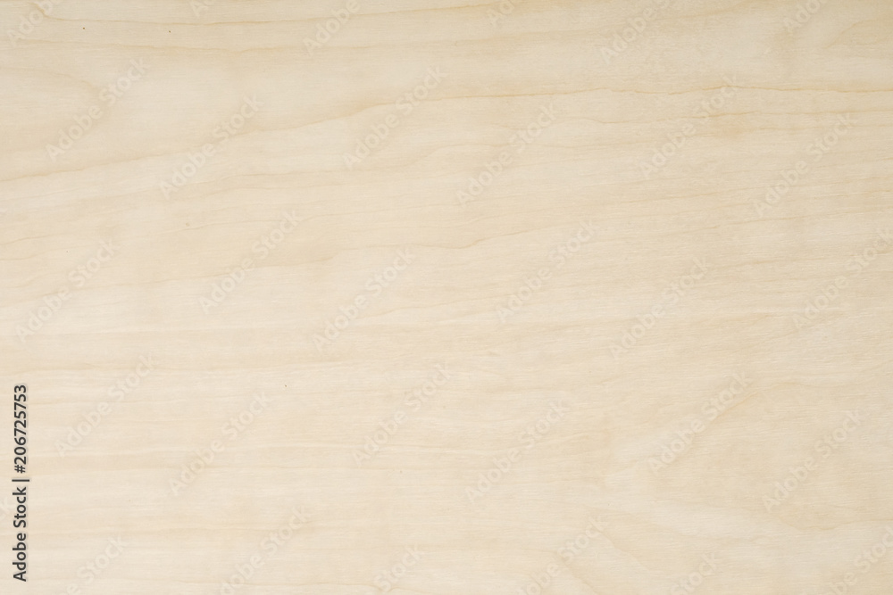 Fototapety, obrazy: Light Wooden Background. Old Wood.