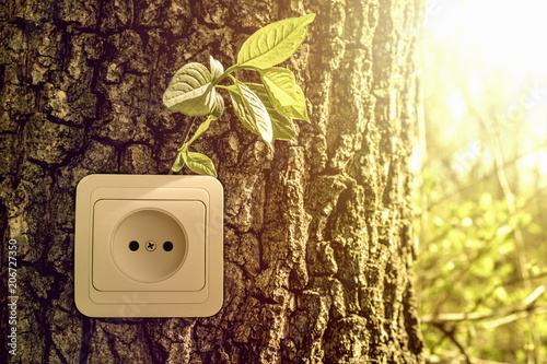 Obraz Green energy concept, power socket in tree trunk - fototapety do salonu