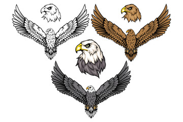 Američki orao postavljen. Logotip ćelavog orla. Crtanje divljih ptica. Glava orla. Vektorska grafika za dizajn.